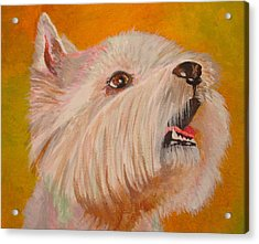 Westie Portrait Acrylic Print by Tracey Harrington-Simpson
