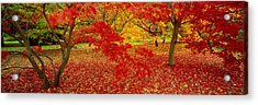 Westonburt Gloucestershire England Acrylic Print by Panoramic Images