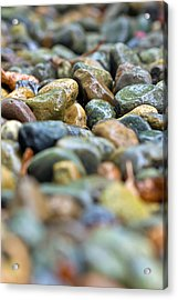 Wet River Rock Acrylic Print by Bob Noble Photography