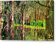 Acrylic Print featuring the photograph Wetland Reflections by Wallaroo Images
