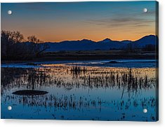Acrylic Print featuring the photograph Wetland Twilight by Beverly Parks