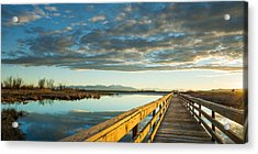 Acrylic Print featuring the photograph Wetland Wooden Path by Jeremy Farnsworth