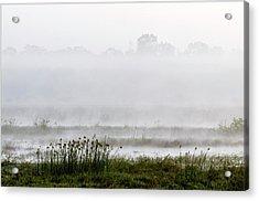Wetlands In Mist Acrylic Print