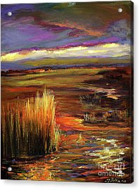 Wetlands Sunset Iv Acrylic Print