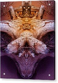 Acrylic Print featuring the photograph Wha by WB Johnston