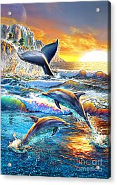 Whale And Dolphins Acrylic Print by Adrian Chesterman