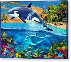 Whale Acrylic Print by Jan Patrik Krasny