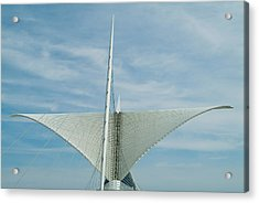Whale Tail Acrylic Print by Devinder Sangha