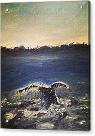 Whale Wonder Acrylic Print by Jessica Sanders