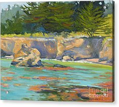 Whalers Cove Point Lobos Acrylic Print by Rhett Regina Owings