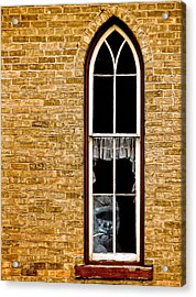 What 800 Lbs Gorilla Acrylic Print by Steve Harrington