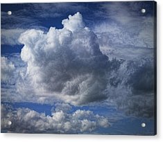 What A Cloud Acrylic Print by Nafets Nuarb