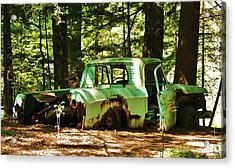 Acrylic Print featuring the photograph What A Find... by Al Fritz