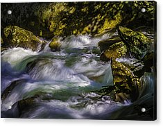 What A Rush Acrylic Print by Barry Jones