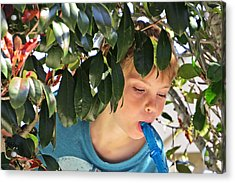What Boys Are Made Of - Trees And Music Acrylic Print by Ella Kaye Dickey