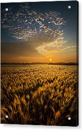 What Dreams May Come Acrylic Print by Phil Koch