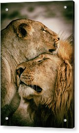 What Is Love Acrylic Print by Mohammed Alnaser