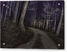 What Lies Lurking Acrylic Print by William Fields