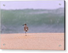 What Wave By Denise Dube Acrylic Print