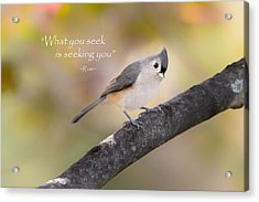 What You Seek Acrylic Print