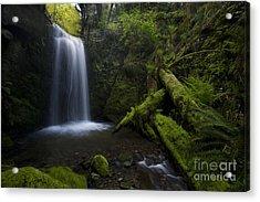 Whatcom Falls Serenity Acrylic Print