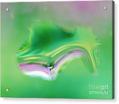 Whats In A Raindrop 5 Acrylic Print by Judy Via-Wolff