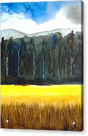 Wheat Field 2 Acrylic Print by Carlin Blahnik