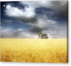 Wheat Field Acrylic Print by Cynthia Decker