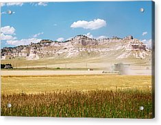 Wheat Harvest Acrylic Print by Jim West