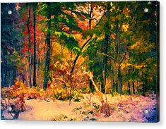 When Fall Becomes Winter Acrylic Print