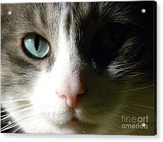 When I Look In Your Eyes.... Acrylic Print by Laura Yamada