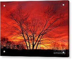 When Morning Guilds The Skies Acrylic Print by Christian Mattison