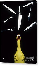 When Rubber Chickens Juggle Acrylic Print by Bob Christopher