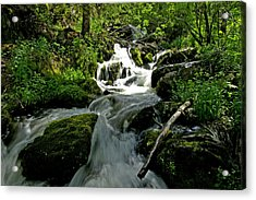 When Snow Melts Acrylic Print
