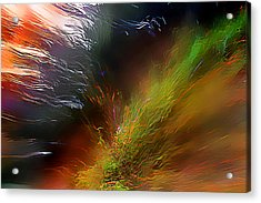 When The Light Burned Acrylic Print by Wernher Krutein