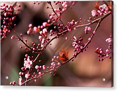When Two Become One Acrylic Print