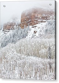 When Winter Falls Acrylic Print