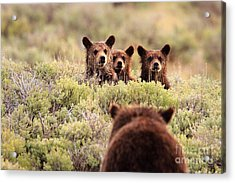 Where Is Your Brother Acrylic Print by Aaron Whittemore