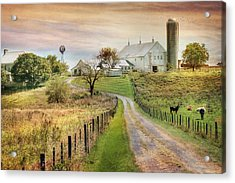 Where Life Is Found Acrylic Print by Lori Deiter