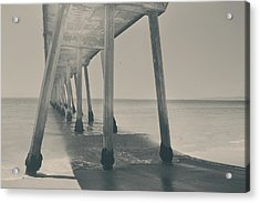 Where Life Takes Us Acrylic Print by Laurie Search