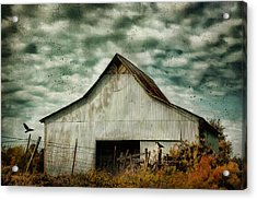 Where The Crows Roost In Autumn Acrylic Print by Jai Johnson