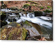 Where The River Flows Acrylic Print by Paul Ward