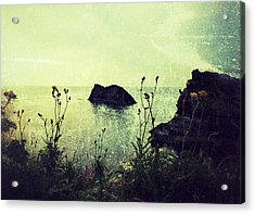 Where There Be Wilde Things  Acrylic Print