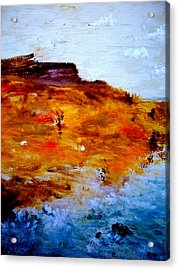 Where We Used To Go Acrylic Print by Guillermo De Llera