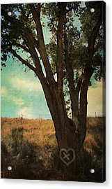 Where We'll Meet Acrylic Print by Laurie Search