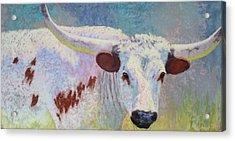 Where's Texas Acrylic Print by Nancy Jolley