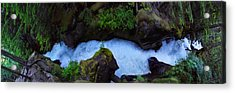 Acrylic Print featuring the photograph Which Way by David Andersen