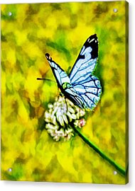 Acrylic Print featuring the painting Whimsical Butterfly On A Flower by Tracie Kaska