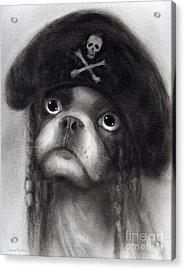 Whimsical Funny French Bulldog Pirate  Acrylic Print by Svetlana Novikova