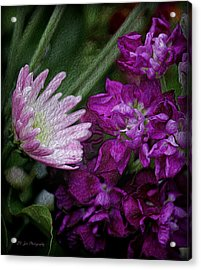 Whimsical Passion Acrylic Print